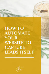 How to Automate Your Website to Capture Leads Itself